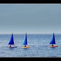 Buy canvas prints of Sail Away by Tracy Hughes
