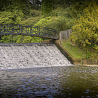 Buy canvas prints of Sheffield Park waterfall by Tracy Hughes