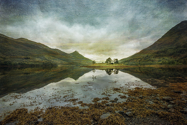 Scottish Loch and Island Canvas print by nick coombs