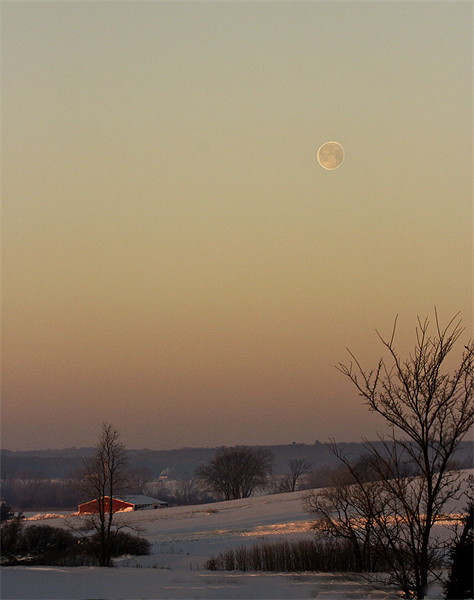Winter Moon Canvas print by Larry Pegram