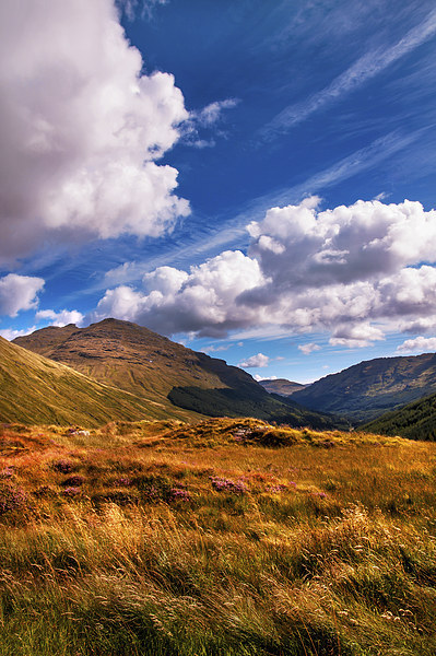 Sunny Day at Rest and Be Thankful. Scotland Canvas print by Jenny Rainbow