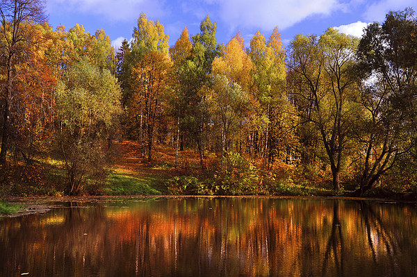 Autumn Reflections  Canvas print by Jenny Rainbow