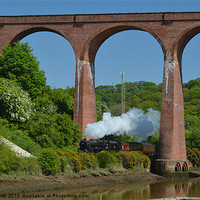 Buy canvas prints of Steam Train Whitby viaduct by colin potts