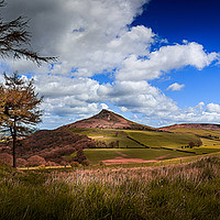 Buy canvas prints of Roseberry Vista by richard sayer