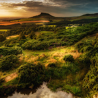 Buy canvas prints of Natures Mirror  by richard sayer