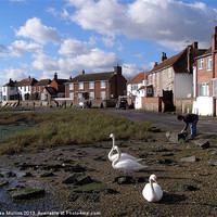 Buy canvas prints of Low tide at Bosham by Lee Mullins