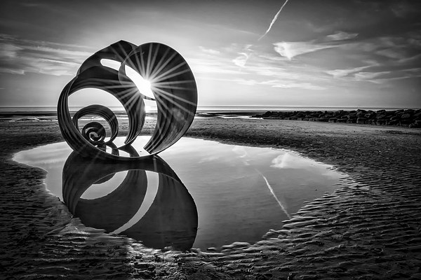 Mary's Shell Black and White Canvas Print by Gary Kenyon