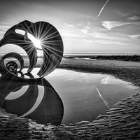 Buy canvas prints of Mary's Shell Black and White by Gary Kenyon