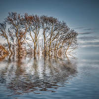 Buy canvas prints of Tranquility by Thanet Photos