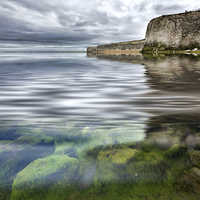 Buy canvas prints of  Under the sea by Thanet Photos
