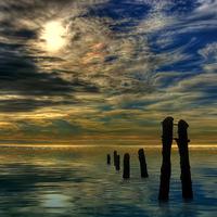 Buy canvas prints of Sandsend Groynes at Sunrise by Steve Clark