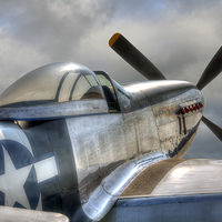 Buy canvas prints of P51 Mustang Ready for Action by Steve Clark