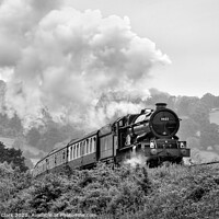 Buy canvas prints of King of the Curve - Black and White by Steve H Clark