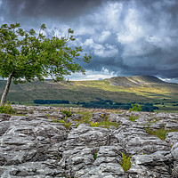 Buy canvas prints of Whenside from Southerscales by Peter Stuart