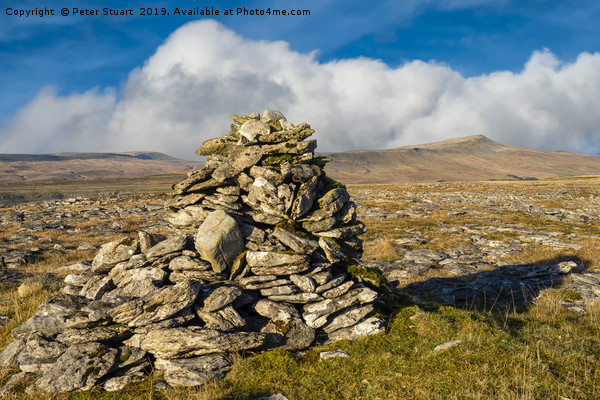 Ingleborough and Whernside in the Yorkshire Dales Canvas print by Peter Stuart