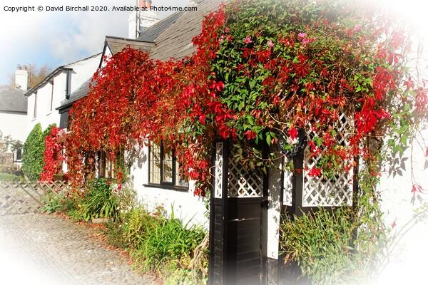 Autumn colour in Scorton, Lancashire. Acrylic by David Birchall