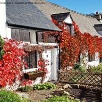 Buy canvas prints of Autumn colour in Scorton, Lancashire. by David Birchall