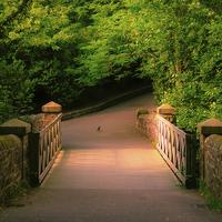 Buy canvas prints of  Saltwell Park Sunny Bridge by Helen Holmes