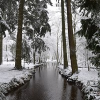 Buy canvas prints of Blackwater in Winter by Alan Sutton