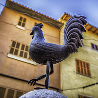 Buy canvas prints of Cockerel by Perry Johnson