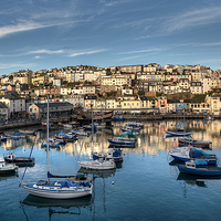 Buy canvas prints of  Brixham Harbour early morning light by Rosie Spooner