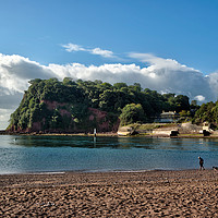 Buy canvas prints of The Ness Headland at Shaldon from Teignmouth by Rosie Spooner