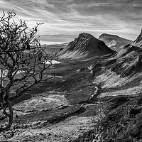 Buy canvas prints of The Quiraing No7 by David Brown