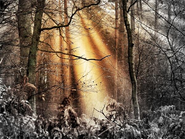 Illumination Acrylic by Mike Jennings