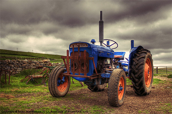 Fordson Super Dexta Tractor Canvas print by Anne Macdonald