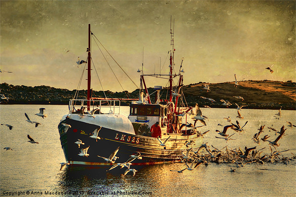 COMRADES With Catch Of Fish Canvas print by Anne Macdonald