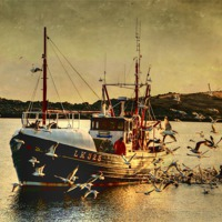 Buy canvas prints of COMRADES With Catch Of Fish by Anne Macdonald