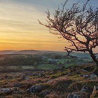 Buy canvas prints of Sunset over Dartmoor National Park by Daniel Rose