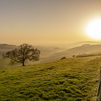 Buy canvas prints of Misty South Downs Way by Malcolm McHugh