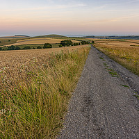 Buy canvas prints of South Downs Way after sunset by Malcolm McHugh
