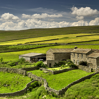 Buy canvas prints of  Swaledale Farm by Martyn Arnold