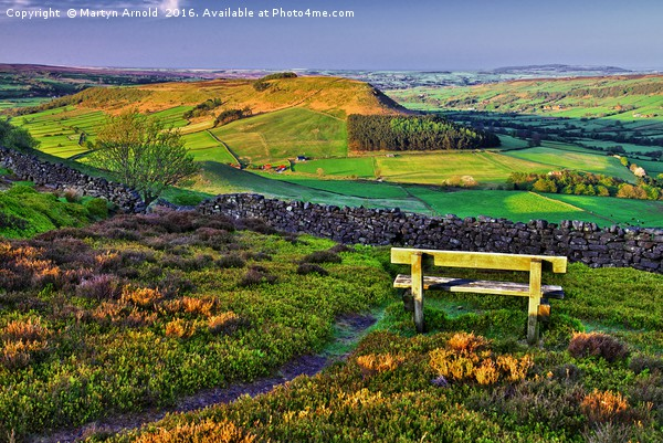 Danby Dale North York Moors Canvas print by Martyn Arnold