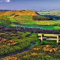Buy canvas prints of Danby Dale North York Moors by Martyn Arnold