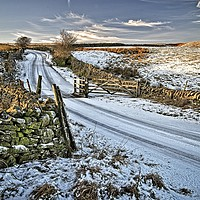 Buy canvas prints of Winter Snow in Weardale by Martyn Arnold