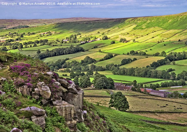 Danby Dale, North York Moors Canvas print by Martyn Arnold