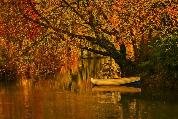 Peaceful Backwater Canvas print by Martyn Arnold