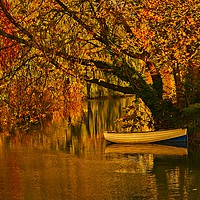 Buy canvas prints of Peaceful Backwater by Martyn Arnold