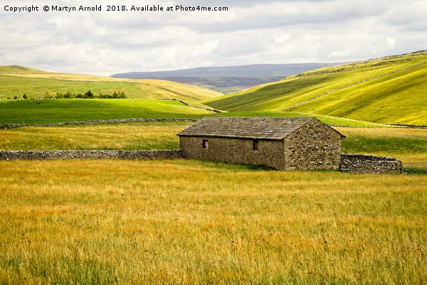 Malhamdale Landscape Yorkshire Canvas print by Martyn Arnold