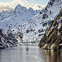 Buy canvas prints of Entering Trollfjord Norway by Martyn Arnold