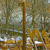 Buy canvas prints of Weardale Way Winter, North Pennines AONB by Martyn Arnold