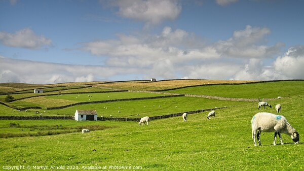 North Pennines Landscape Canvas Print by Martyn Arnold