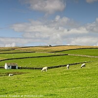 Buy canvas prints of North Pennines Landscape by Martyn Arnold