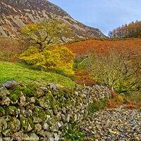 Buy canvas prints of Autumn Walk in the Lake District by Martyn Arnold