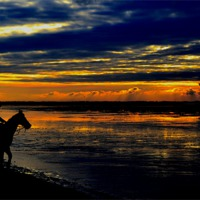 Buy canvas prints of The Sunset Rider by Jon Clifton