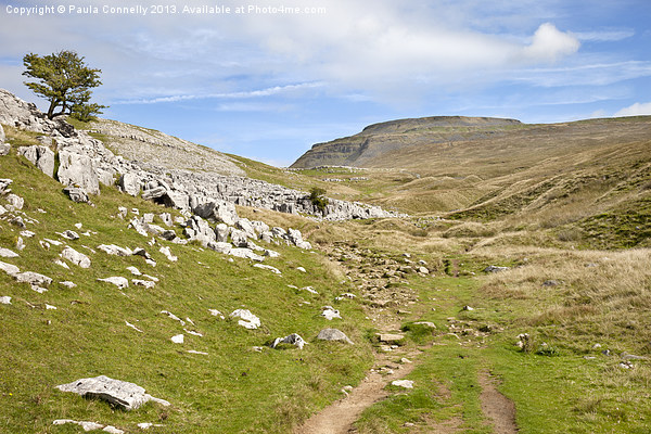 Ingleborough in the Yorkshire Dales Canvas print by Paula Connelly