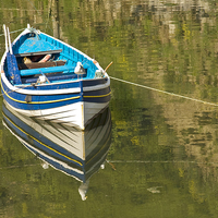 Buy canvas prints of Rowing Boat by Paula Connelly